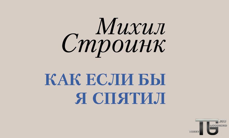 Михил Строинк в России