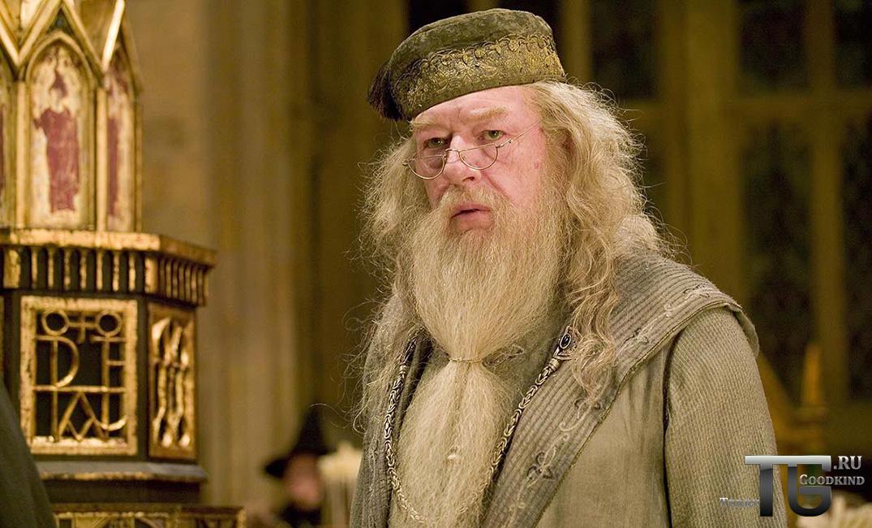 Альбус Дамблдор из Гарри Поттера